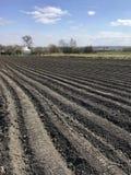 Plogat fält för potatis i brun jord på den öppna bygdnaturen arkivfoton