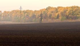 Plogat fält med kraftledningen mot bakgrunden av den gula höstskogen royaltyfri bild