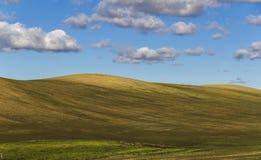 Plogat fält med kullar och några cloudes Arkivbilder