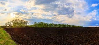 Plogat fält på våren mot himlen och solen arkivfoto