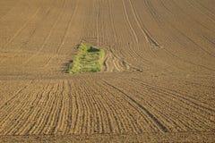 plogat land Fotografering för Bildbyråer