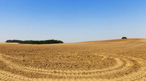 Plogat land, närbild Royaltyfria Foton