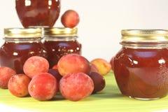 Confiture de prune photo stock