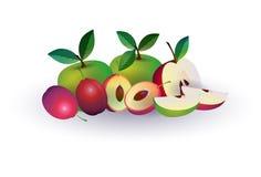 Plommonäpplefrukt på vit bakgrund, sund livsstil eller bantar begreppet, logoen för nya frukter royaltyfri illustrationer
