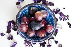 Plommon i violet Arkivfoton