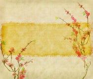 Plommonblomning på gammalt antikt tappningpapper arkivfoton