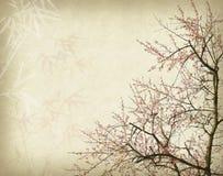 Plommonblomning på gammalt antikt tappningpapper Arkivbilder