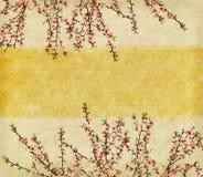 Plommonblomning på gammalt antikt tappningpapper Arkivbild