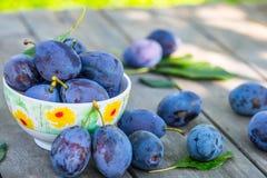 plommoner Blåa och violetta plommoner i trädgården på trätabellen plommoner Blåa och violetta plommoner i trädgården på trätabell Arkivbilder