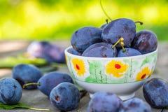 plommoner Blåa och violetta plommoner i trädgården på trätabellen plommoner Blåa och violetta plommoner i trädgården på trätabell Arkivfoton