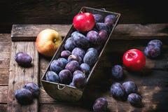 Plommoner och äpplen arkivfoto