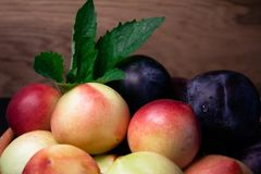 Plommoner och nektariner på trätexturbakgrund Arkivfoton