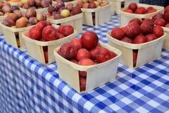 Plommoner på marknaden för bonde` s royaltyfri bild