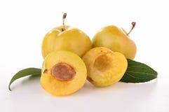 Plommonfrukt Royaltyfria Bilder