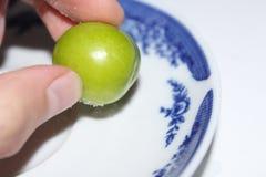 Plommonfrukt Fotografering för Bildbyråer