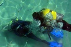 plongée Image stock
