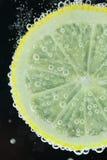 Plongée de tranche de citron dans l'eau photos libres de droits