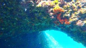Plongée en Croatie Photo libre de droits
