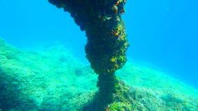 Plongée en Croatie Photographie stock
