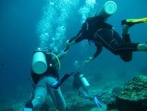 Plongée en mer photos stock