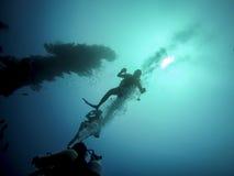 Plongeant en Barbade, des Caraïbes Photographie stock libre de droits