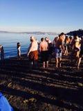 Plongeon d'ours blanc d'eaux froides de défi de nageurs en 2015 photo libre de droits