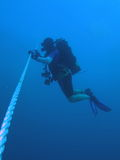 Plongeur à l'arrêt de sécurité Photos stock