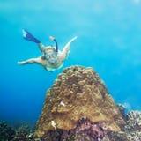 Plongeur Photos libres de droits