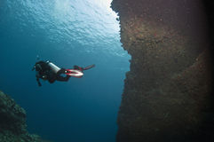 Plongeur Photos stock