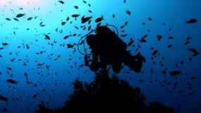 Plongeur autonome Photographie stock libre de droits