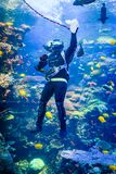 Plongeur autonome dans le réservoir tropical avec des créatures de mer à l'aquarium Etats-Unis de la Géorgie avec des plongeurs a Image stock
