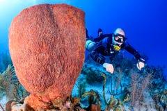 Plongeur autonome dans le sidemount sur un récif Image libre de droits