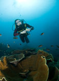 Plongeur autonome de femme Photographie stock