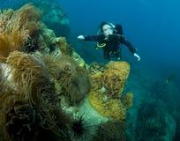 Plongeur autonome de femme Photos stock
