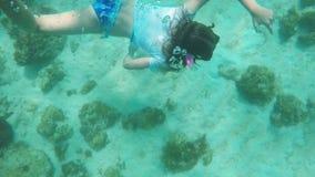 Plongeur autonome de jeune fille banque de vidéos