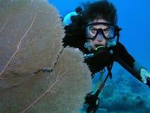 Plongeur autonome par le corail de ventilateur photographie stock libre de droits