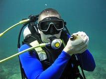 Plongeur autonome tenant des poissons, Thaïlande Images stock