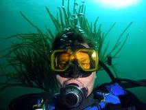 Plongeur avec la coiffure photo libre de droits