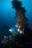 Plongeur avec la lumière sur le mât avant Photographie stock libre de droits