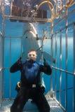 Plongeur dans la cage de requin Images libres de droits