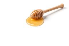 Plongeur de miel Photos stock