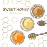 Plongeur de miel et miel dans le pot avec le décor de nid d'abeilles sur le fond blanc Images libres de droits