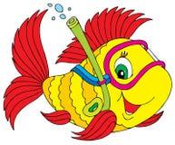 Plongeur de poissons Photographie stock