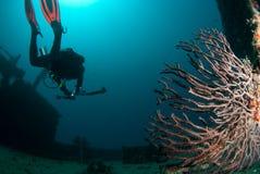 Plongeur de Rebreather Images libres de droits