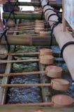 Plongeur en bois de l'eau au tombeau de Fushimi Inari à Kyoto, Japon images stock