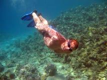 Plongeur et récif coralien Image libre de droits