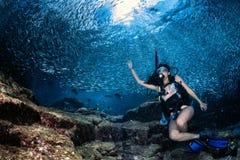 Plongeur Inside de Beaytiful Latina une école des poissons Images libres de droits