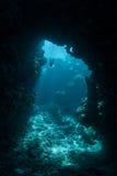 Plongeur libre sur la barrière de corail Photos libres de droits