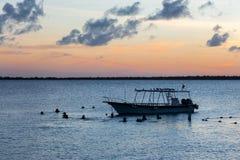 Plongeurs au coucher du soleil Photographie stock libre de droits