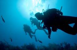 plongeurs contre éclairés photos libres de droits